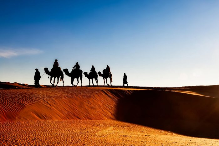 6 days 5 Nights Package Tour : Marrakech – Desert Tour.